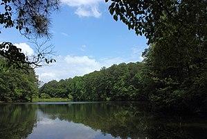 Aldridge Botanical Gardens - Lake in Aldridge Botanical Gardens