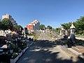 Allée dans l'ancien cimetière de Villeurbanne (mai 2020).jpg