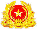 All of Vietnam People's Army insignia.jpg