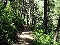 Alpine Scenic Highway Walking Trail in Utah - panoramio.jpg