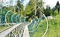 Alpsee Coaster - Rodelbahn - panoramio (2).jpg