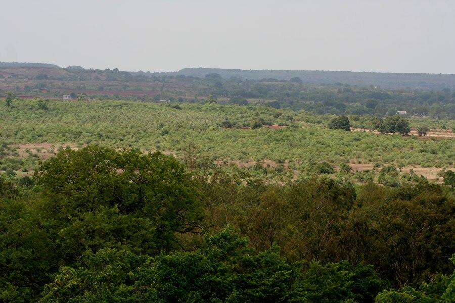 Ananthagiri forest in AP W IMG 9371