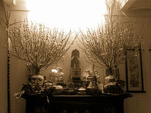 Tết - Altar to the ancestors adorned with flowers, fruits and food offerings