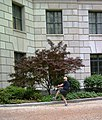 April 19, 2013 - Courtyard Practice for EPA Acting Administrator Bob Perciasepe (8678292395).jpg