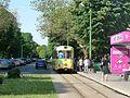Arad tram 2017 21.jpg