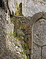 Arched ruin (8042583613).jpg