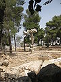 Archeological park of Ramat Rachel IMG 2207.JPG