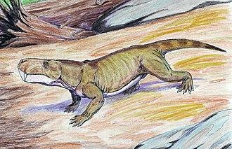 1911 in paleontology - Arctognathus