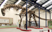Titanosaurs - Photo (c)  William Irvin Sellers, Lee Margetts, Rodolfo Aníbal Coria, Phillip Lars Manning, some rights reserved (CC BY)