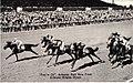 Arlington Park Race Track (NBY 10273).jpg