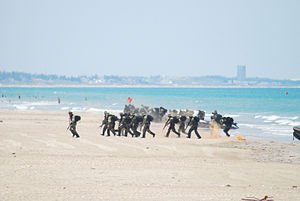 Amphibious warfare - Mexican sailors, landing in 2010