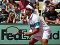 Arnaud Clement, 2011 Roland Garros (2).jpg