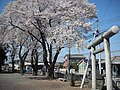 Atago-shrine Isesaki Hashie 001.JPG