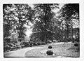 Augusta Victoria Garten ca. 1925 - Doorn - 20059684 - RCE.jpg