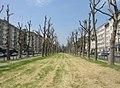 Augustaanlage - geo.hlipp.de - 2146.jpg