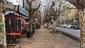 Autumn Avenue Mohamed Diouri, Kenitra.jpg