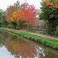 Autumn colours on the canal. Rugeley, Staffordshire - geograph.org.uk - 1556810.jpg