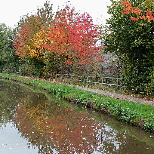 Autumn colours on the canal. Rugeley, Staffordshire - geograph.org.uk - 1556810