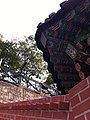 Autumn in Seoul, Korea 2013 (10325216466).jpg