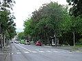 Avenue Raymond-Poincaré (Colmar) (1).JPG