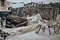 Aztec Great Temple (9792594163).jpg