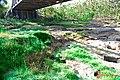 BAWAH JEMBATAN SEMIN - panoramio.jpg