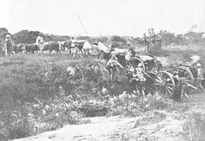Ordnance BL 15 pounder - Gun of 7th Field Battery towed by oxen, German East Africa, World War I