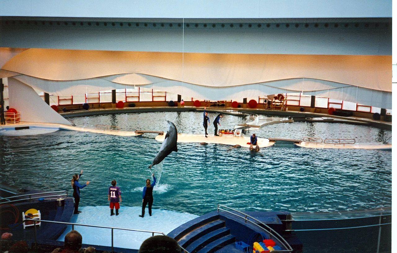 50 Photos Of National Aquarium In Baltimore Places