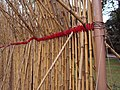 Bamboo poles on hinges (5513336646).jpg