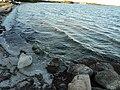 Banana River - Merritt Island, FL - panoramio.jpg