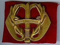 Baretembleem-Stoottroepen.jpg