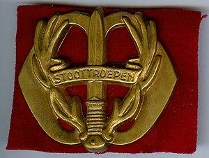 Regiment Stoottroepen Prins Bernhard - Image: Baretembleem Stoottroepen