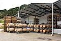 Barrels of wine stacked, Warwick Wine Estate, Stellenbosch, Western Cape, South Africa (20318885999).jpg