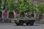 Bastille Day 2015 military parade in Paris 37.jpg