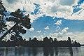 Bear Head Lake State Park - Summer Afternoon (36243044145).jpg