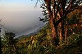 Bear Mountain (熊空) - panoramio (5).jpg