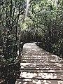 Beddagana wetland park.jpg
