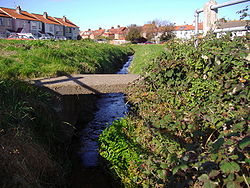 Beeston Beck on Sheringham Back Common.JPG