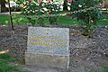 Benalla Rose Garden 002.JPG