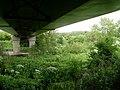 Beneath the Clydeford Bridge - geograph.org.uk - 1359090.jpg