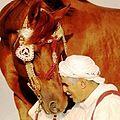Berber equitation.jpg