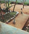 Berenty lemurs.jpg