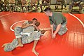 Best Warrior Combatives 141212-A-IO181-002.jpg