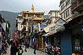 BirG087-Dharamsala.jpg