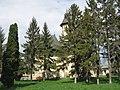 Biserica Sfântul Dumitru din Hârlău.jpg