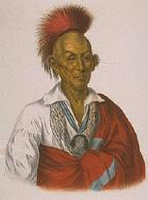 Fort Armstrong, Illinois - Painting of Black Hawk, the Sauk war chief and Black Hawk War namesake, being the last Indian war in Illinois, for whom many of the local banks, businesses, and schools are named
