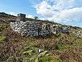 Black House at Port-na-Caranean (geograph 2920683).jpg