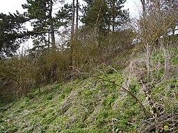 Blewburton Hill 01