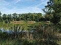 Bobnice, rybník.jpg