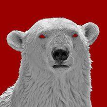 BoBoMisiu, my avatar